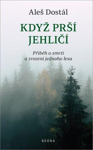 Když prší jehličí: příběh o smrti a zrození jednoho lesa / Aleš Dostál - obálka knihy
