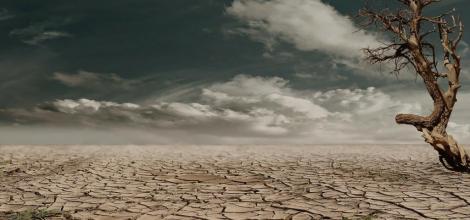 Sucho - nejvážnější hrozba krajiny 21. století